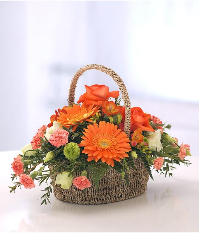 Vivid Basket